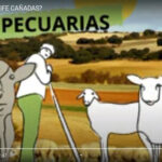 An animation video is published to disseminate the objectives of the LIFE CAÑADAS project